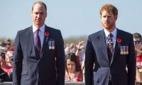 Prince William, Prince Harry Feud Began Prior To Meghan Markle