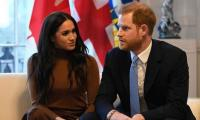 'Coordinated harassment campaign' targeted Meghan Markle, Harry: report